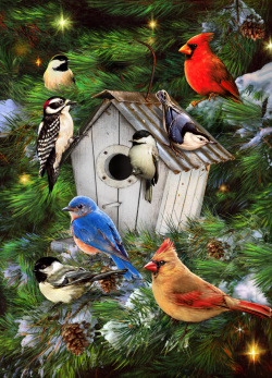 Winter Birdhouse Jigsaw Puzzle