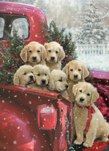 Christmas Delivery Jigsaw Puzzle