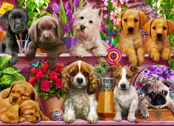 Puppies Galore Jigsaw Puzzle