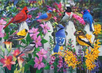 Songbirds Jigsaw Puzzle