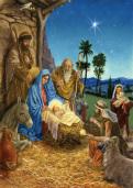 Arrival Christmas Card