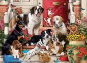 A Dog's Life Jigsaw Puzzle