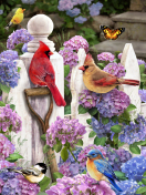 Cardinals & Friends Jigsaw Puzzle
