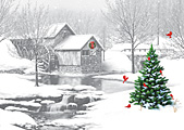 A Winter Evening Christmas Card