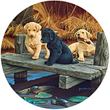 Puppies and Friends Jigsaw Puzzle