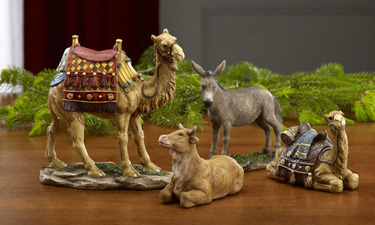 Real Life Nativity Stable Animals