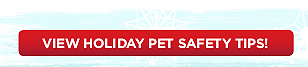 View Holiday Pet Safety Tips!