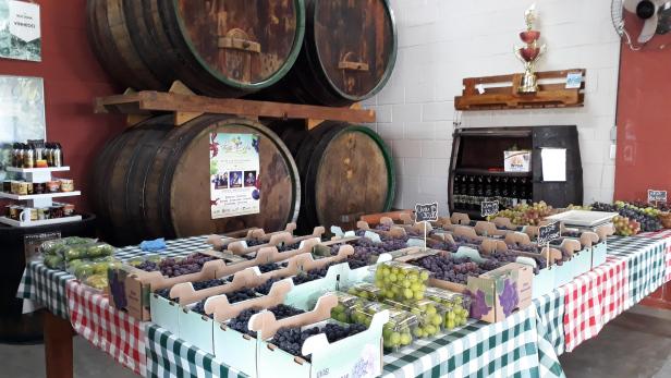 roteiro-Turismo rural e boa gastronomia: conheça o Circuito das Frutas e Flores