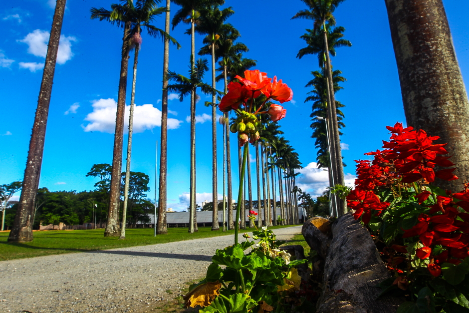 roteiro-Working in São José dos Campos? Take the opportunity to get to know the city