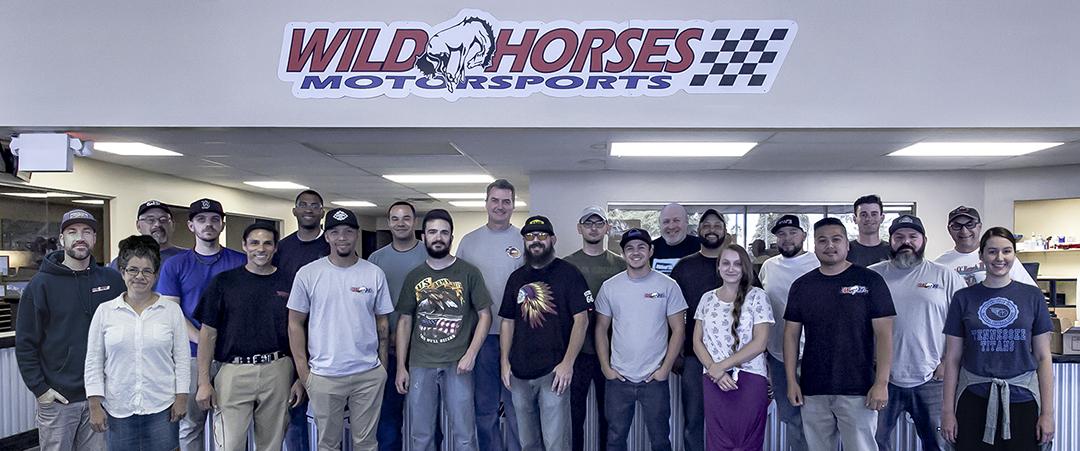 Wild Horses Staff Photo