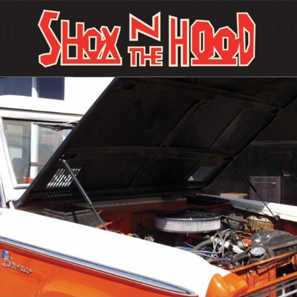 1966-1977 Early Ford Bronco Hydraulic Hood Props Shocks KIT