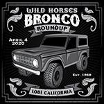 WILD HORSES Round-Up