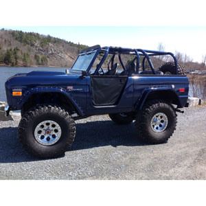 Buy Family Custom Cage Wild Horses Early Ford Bronco Parts