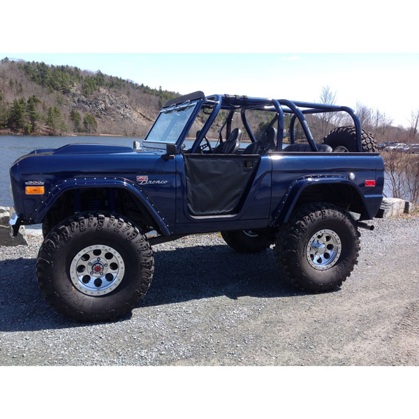 Buy Family Custom Cage - WILD HORSES Early Ford Bronco Parts