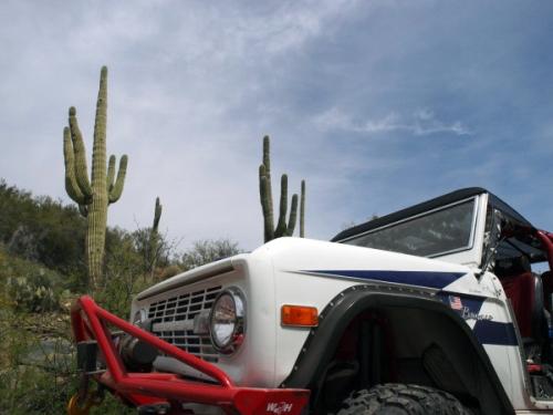 2009 Arizona Bronco Stampede