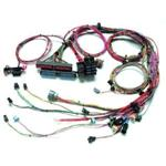 Painless Fuel Injection Harness 99-02 GM LS-1 Extra Length