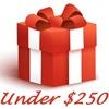 GIFT IDEAS UNDER $250