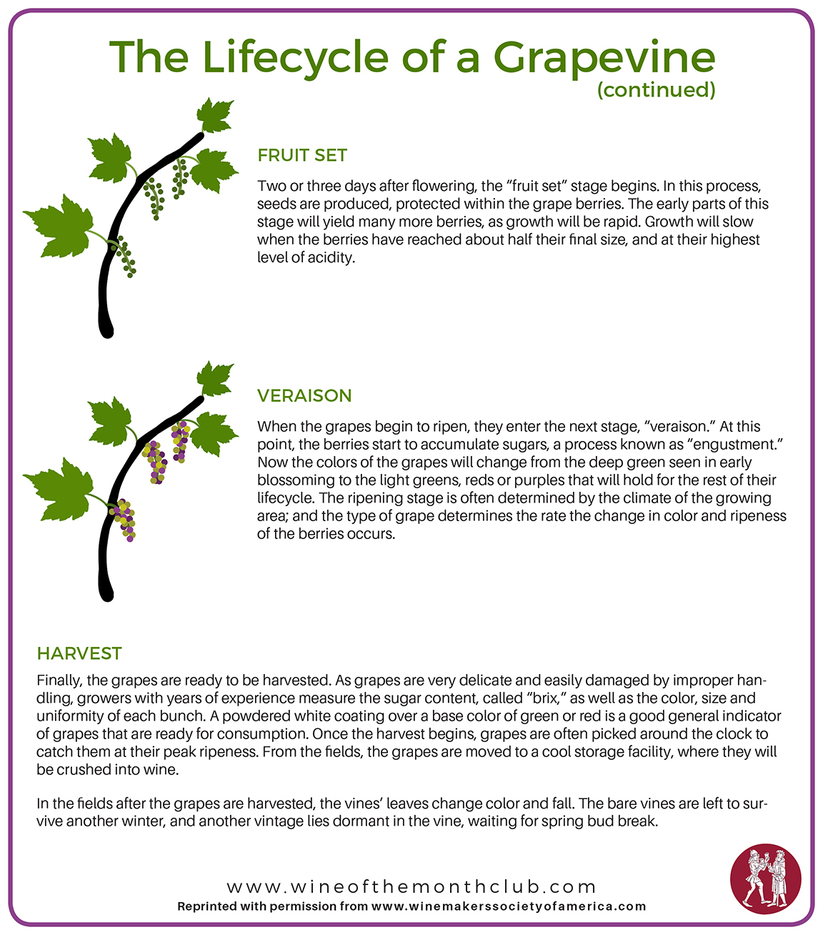 Grapevine Lifecycle