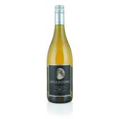 Chardonnay, 2015. Spellbound