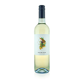 Loureiro, 2017. Bonina Vinho Verde