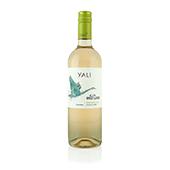 Sauvignon Blanc, 2017. Yali