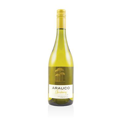 Chardonnay, 2019. Arauco