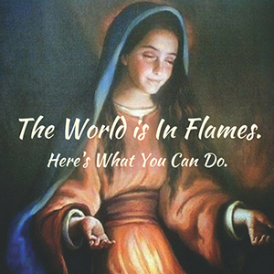 The World is In Flames. Here's What You Can Do.