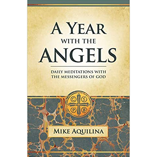 A Year With the Angels - Daily Meditations with the Messengers of God  (Paperback) Mike Aquilina