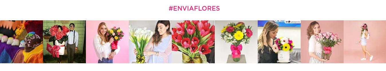 EnviaFlores: opiniones, comentarios y sugerencias