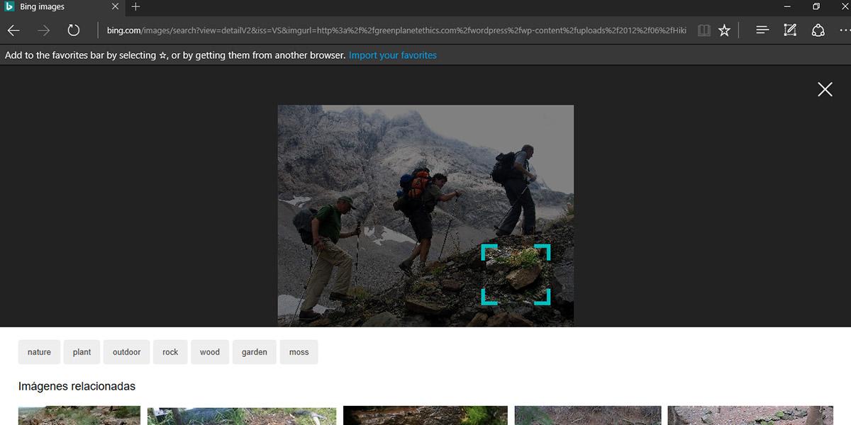 Microsoft mejora búsqueda de imágenes en Bing