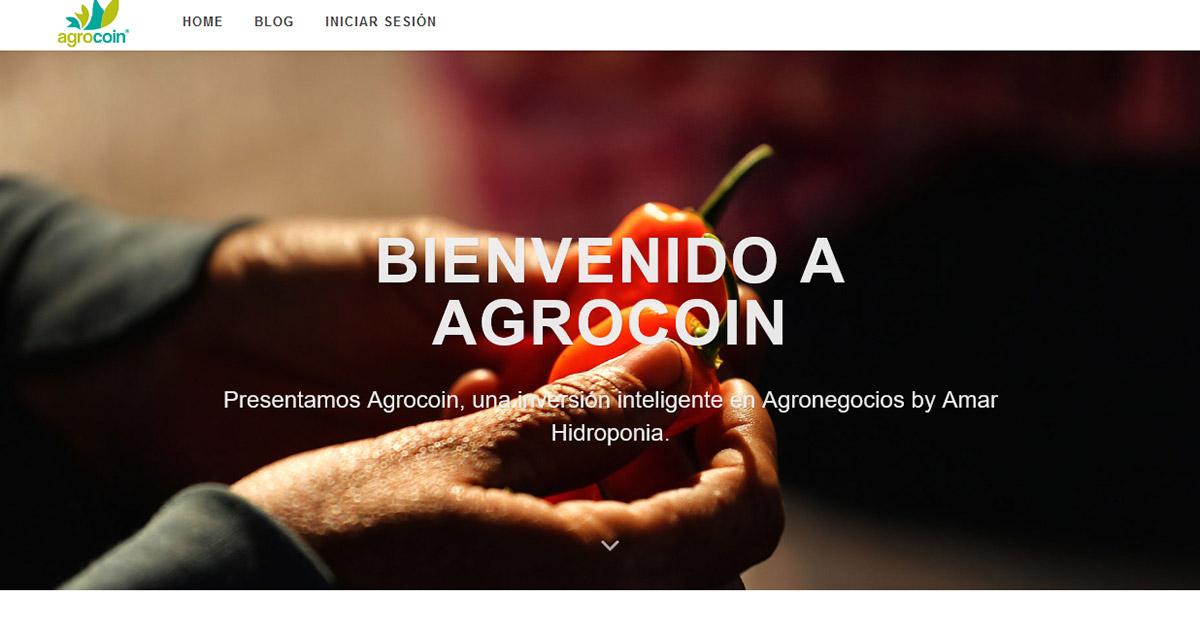 Agrocoin: los bitcoins llegan al campo mexicano