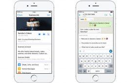 WhatsApp Business para iOS ya está (¡por fin!) disponible, y México es uno de los primeros países en probarlo