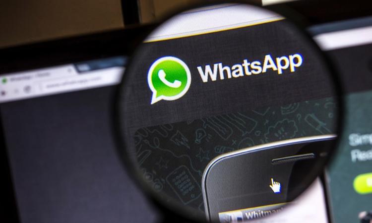 El 63% de las noticias falsas en WhatsApp son reenviadas por familiares