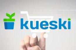 Retos eCommerce en México: Kueski Pay es la solución