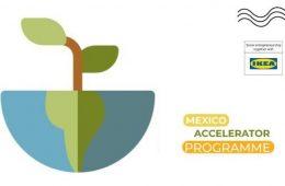 Mexico Accelerator Programme 2021