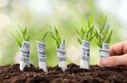 cómo crear tu startup de ecommerce