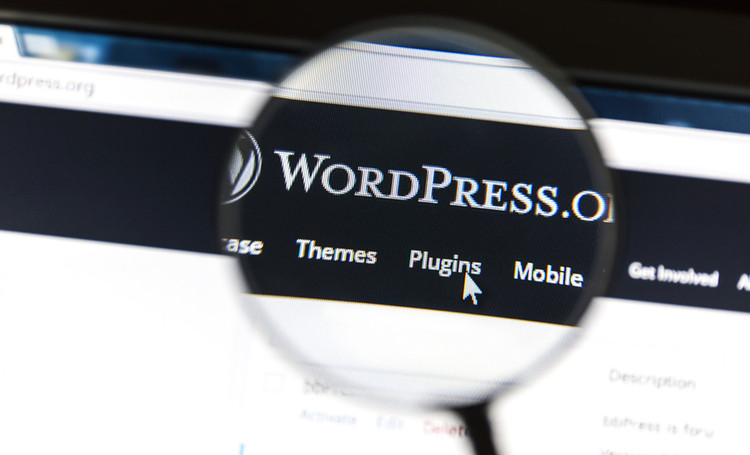 wordpress com wordpress org