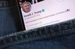 Twitter niega el shadowbanning: así penaliza Twitter a las cuentas en su algoritmo