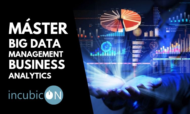 master big data business analytics incubicon
