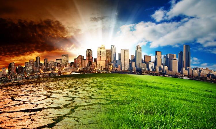 cambio climático ecommerce
