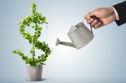 proyectos financiero
