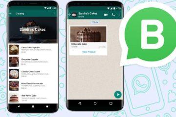 Catálogos de productos en WhatsApp: la app se acerca (más) al eCommerce
