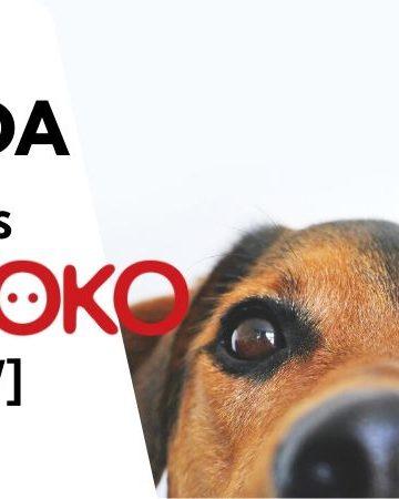KIWOKO OPINIONES