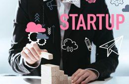 ecosistema startup