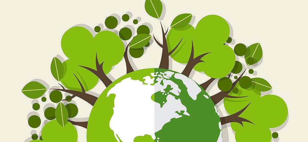 Comprar de forma sostenible en marketplaces es posible: así es FairChanges