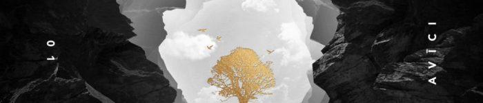 Avicii Lonely together Chord Progression yallemedia.com