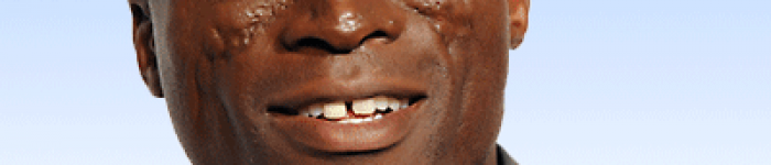 Seal chords