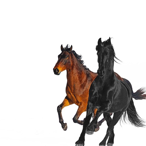 Lil Nas X Old town road chords
