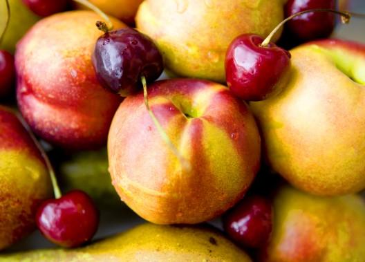 Yurosek Farms Pistachio Berry Vineyard Pears
