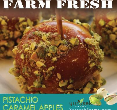 Yurosek Farms Pistachio Caramel Apples